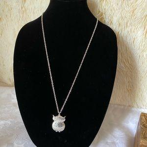 Ashley cooper Silver-Tone owl 🦉 pendant necklace